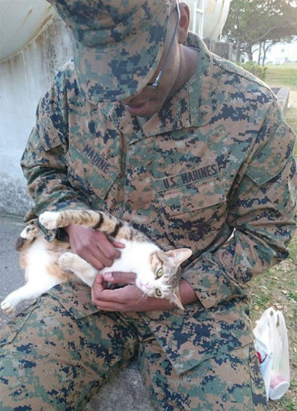 soldiers_share_some_bonding_time_with_cats_640_07