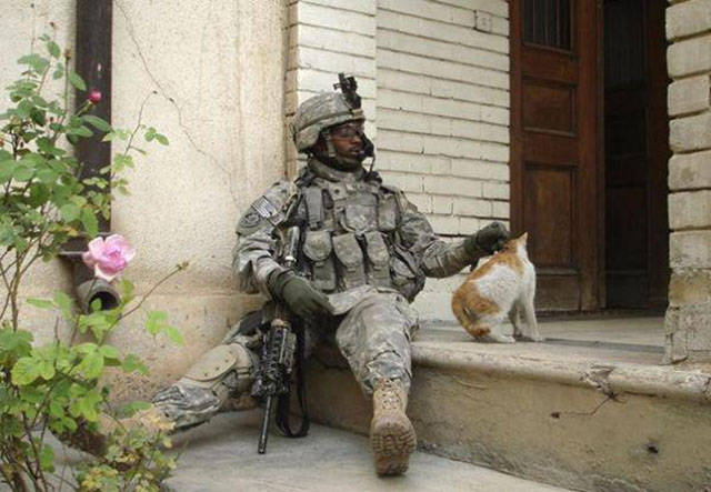 soldiers_share_some_bonding_time_with_cats_640_13