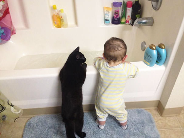 04-ほっこり20枚! 赤ちゃんとネコの仲良しな風景