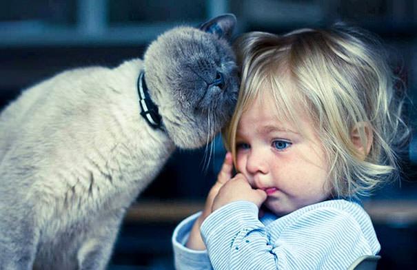 05-ほっこり20枚! 赤ちゃんとネコの仲良しな風景