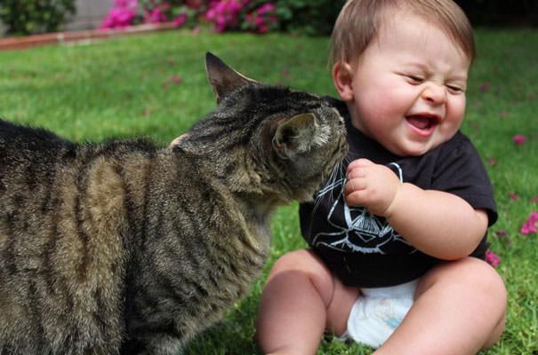 15-ほっこり20枚! 赤ちゃんとネコの仲良しな風景
