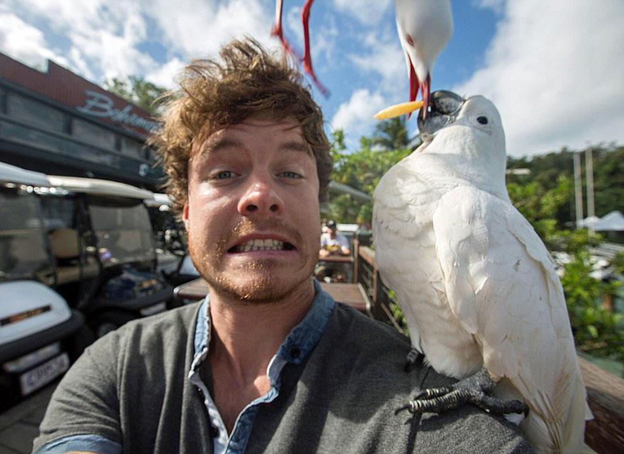funny-animal-selfies-allan-dixon-261