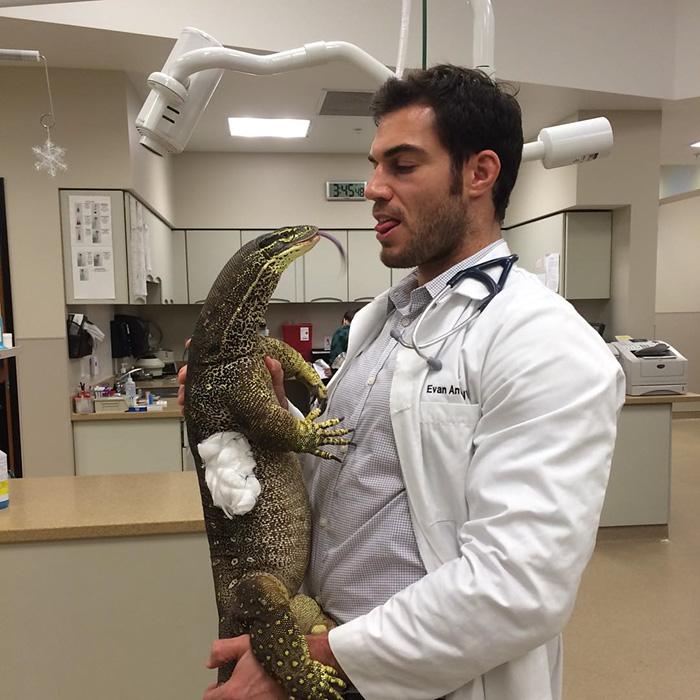 hottest-vet-pet-doctor-evan-antin-california-334__700