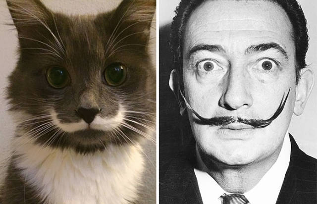 celebs_and_their_strikingly_similar_animal_doppelgangers_640_09