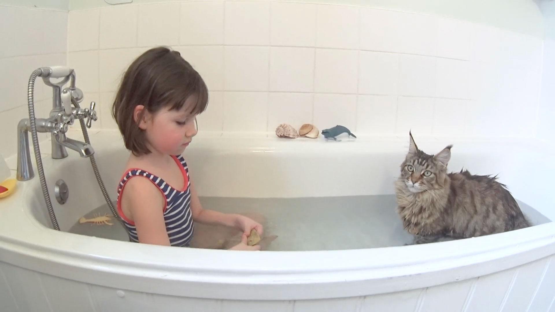 自閉症の女の子とずっと寄り添う心優しいネコのスーラ01