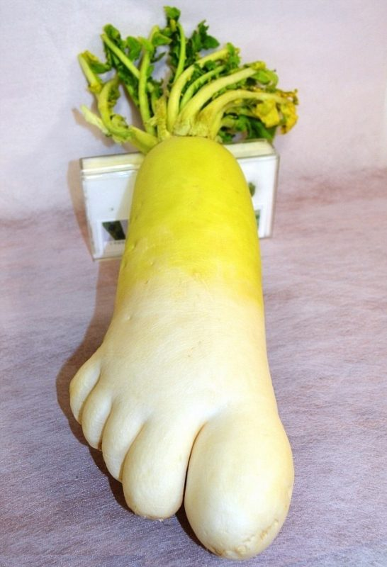 footradish