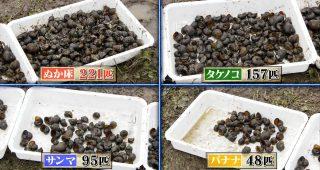 ジャンボタニシに困っているプロの米農家も感謝 TOKIOが教えてくれた対策「TOKIOすげぇなw」